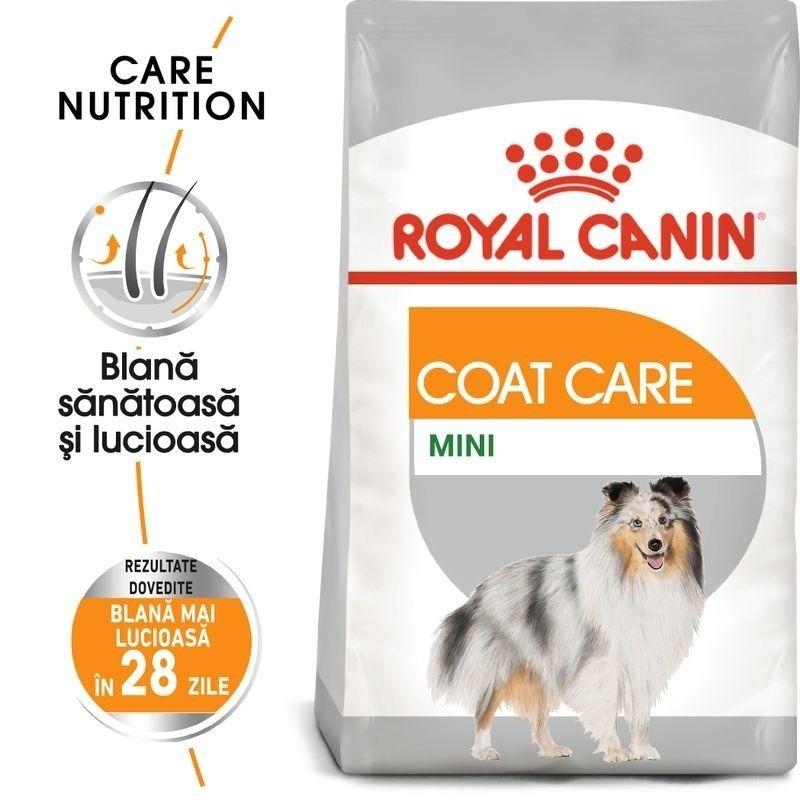 Royal Canin Mini Coat Care, 3 kg + 2 plicuri Coat Loaf x 85 g GRATIS
